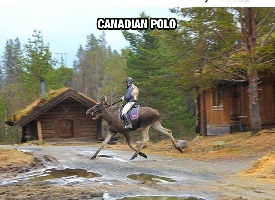 Canadian Polo